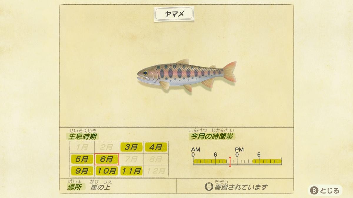 f:id:negototsukasa:20200330174605j:plain