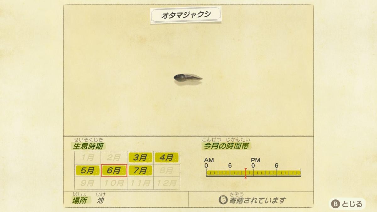 f:id:negototsukasa:20200330191334j:plain