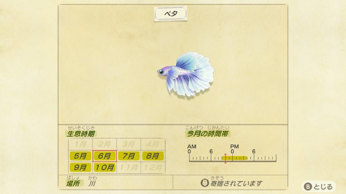f:id:negototsukasa:20200330191337j:plain