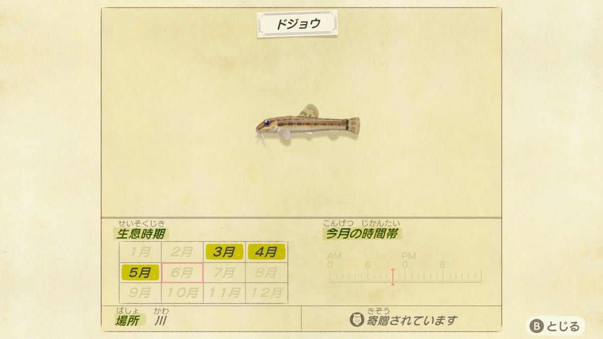 f:id:negototsukasa:20200330191347j:plain