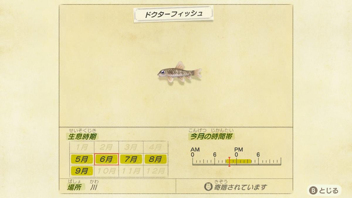 f:id:negototsukasa:20200330191349j:plain
