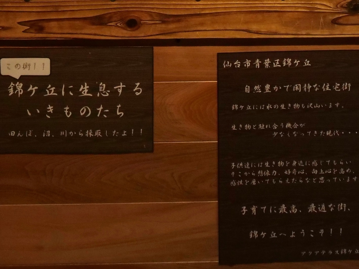 f:id:negototsukasa:20200510170444j:plain