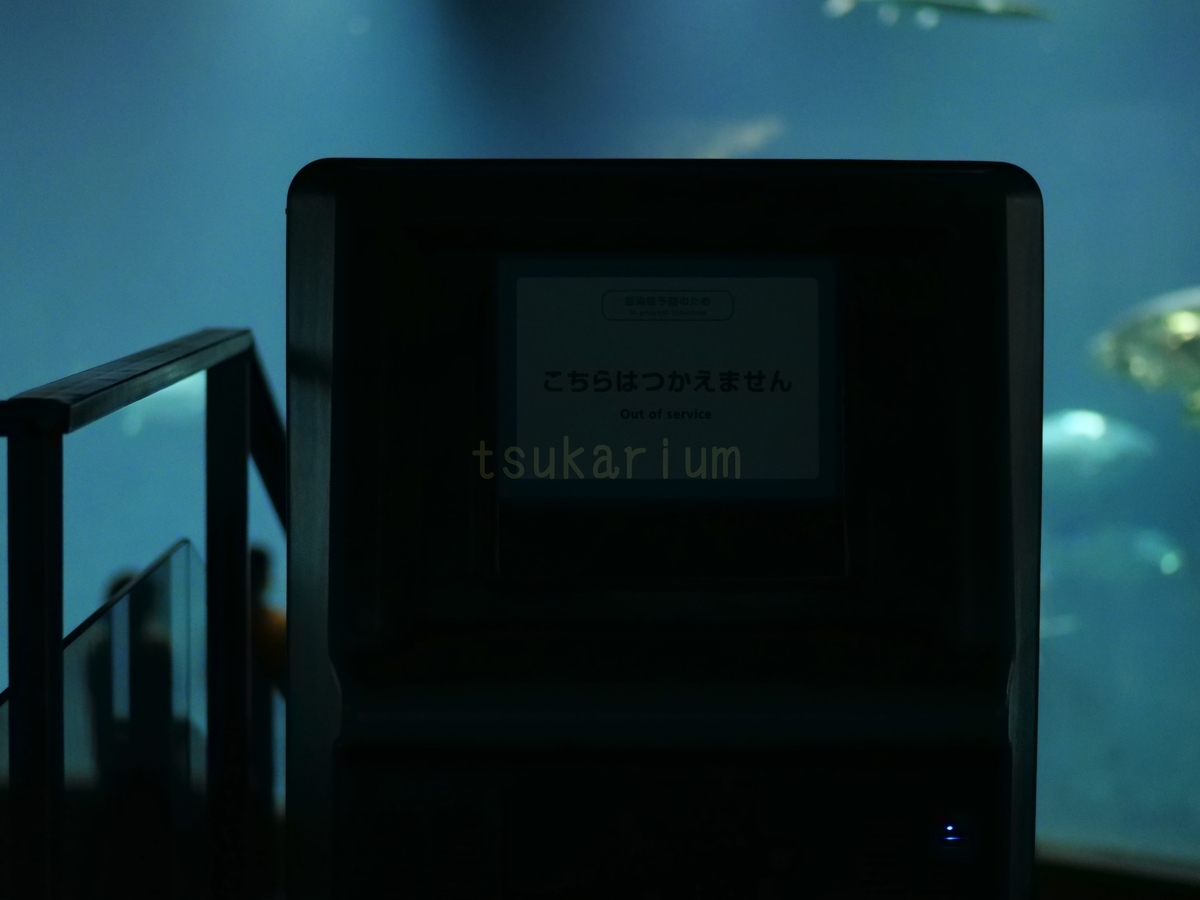 f:id:negototsukasa:20200623223632j:plain