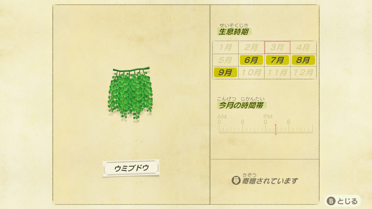 f:id:negototsukasa:20200705002153j:plain