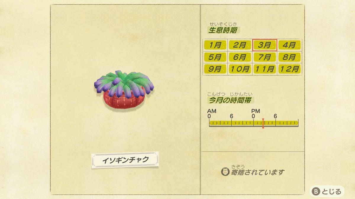 f:id:negototsukasa:20200705002215j:plain