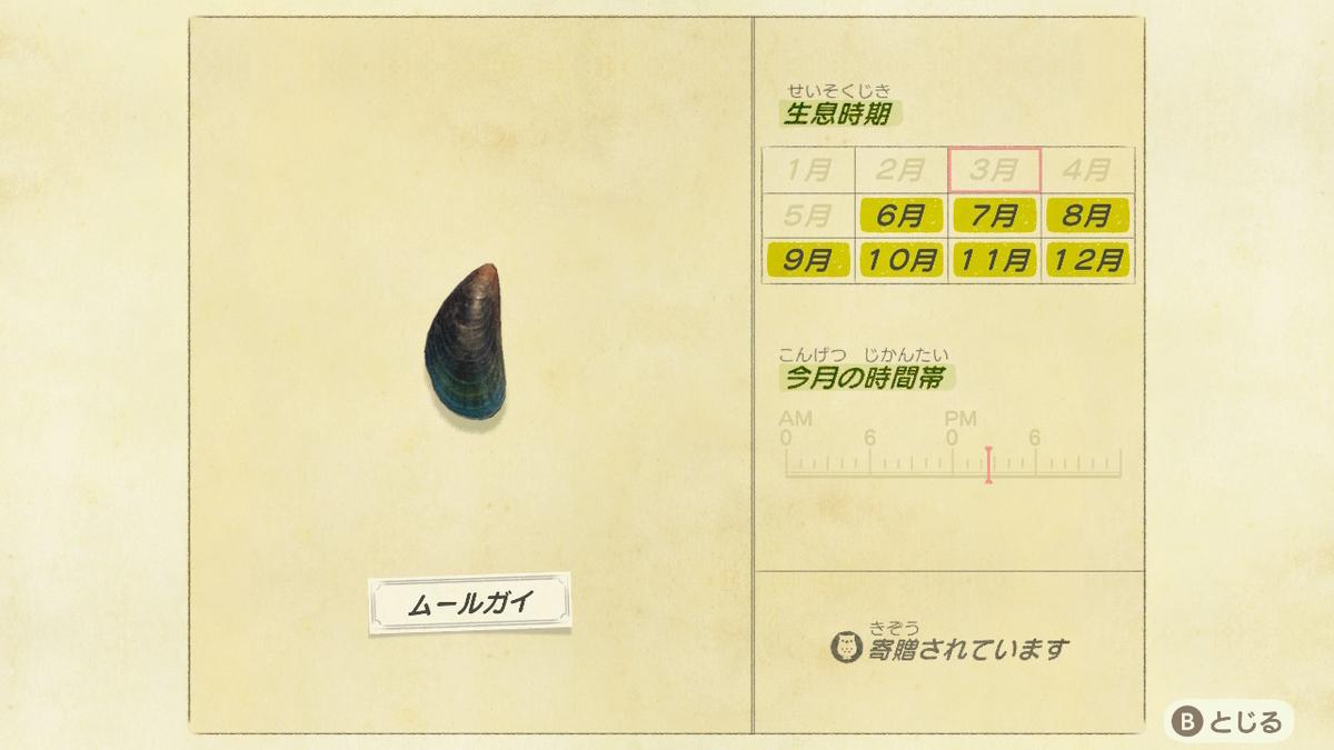 f:id:negototsukasa:20200705002230j:plain