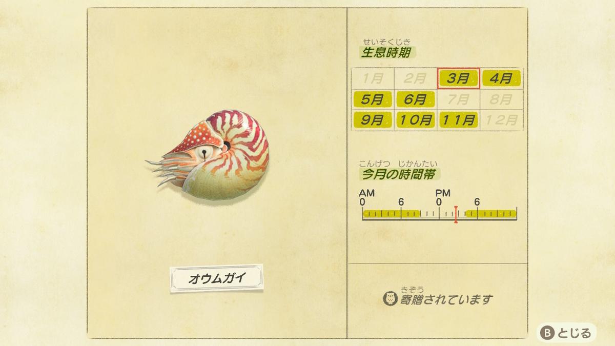 f:id:negototsukasa:20200705002345j:plain