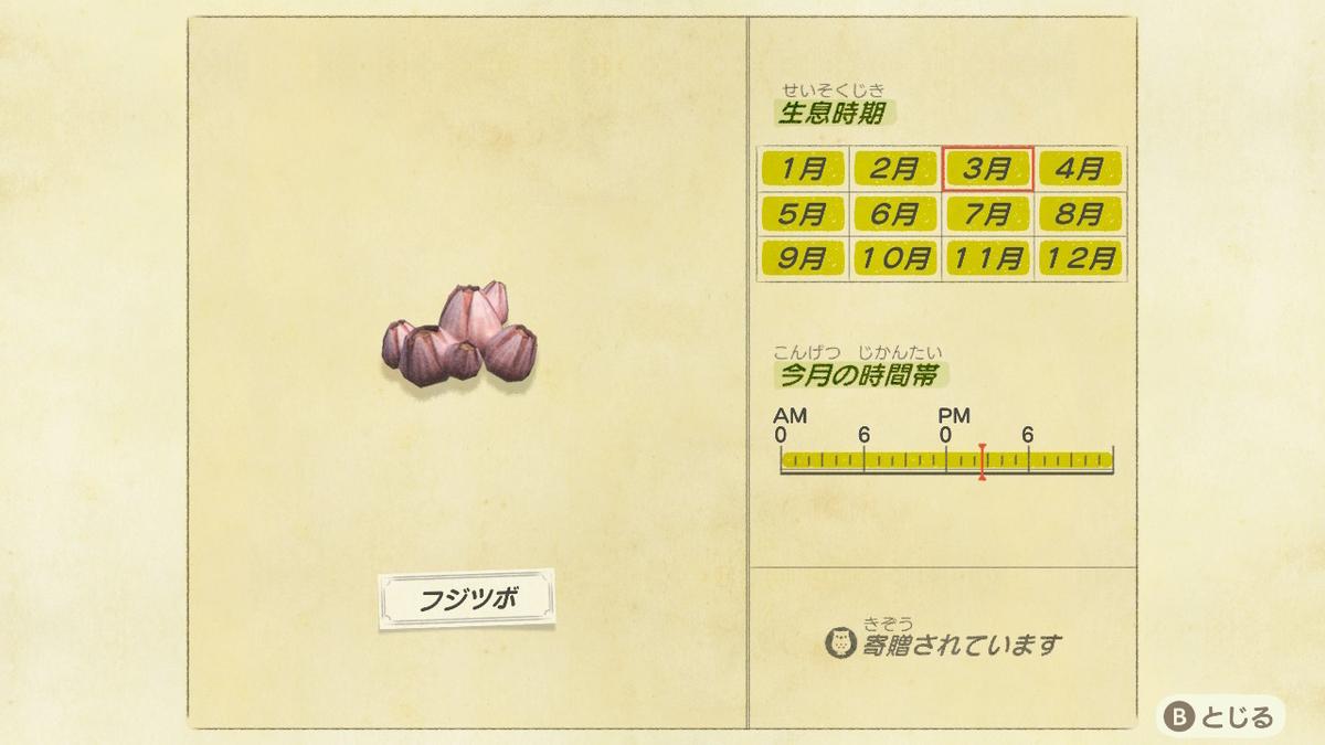 f:id:negototsukasa:20200705002418j:plain