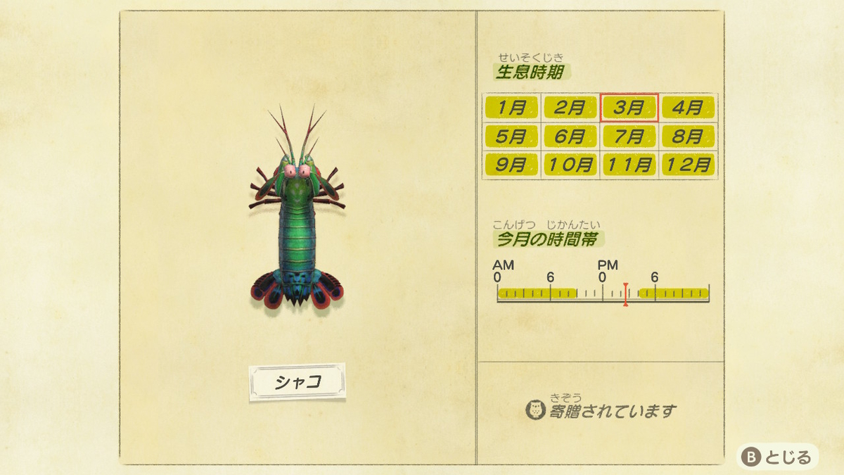 f:id:negototsukasa:20200705002433j:plain