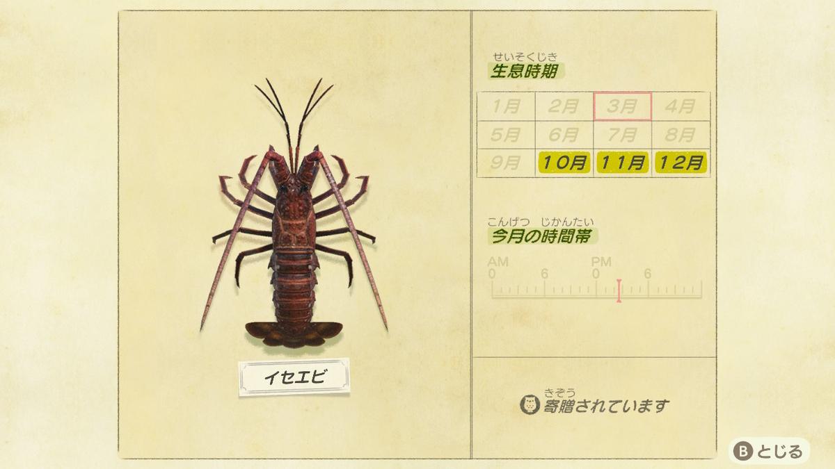 f:id:negototsukasa:20200705002436j:plain