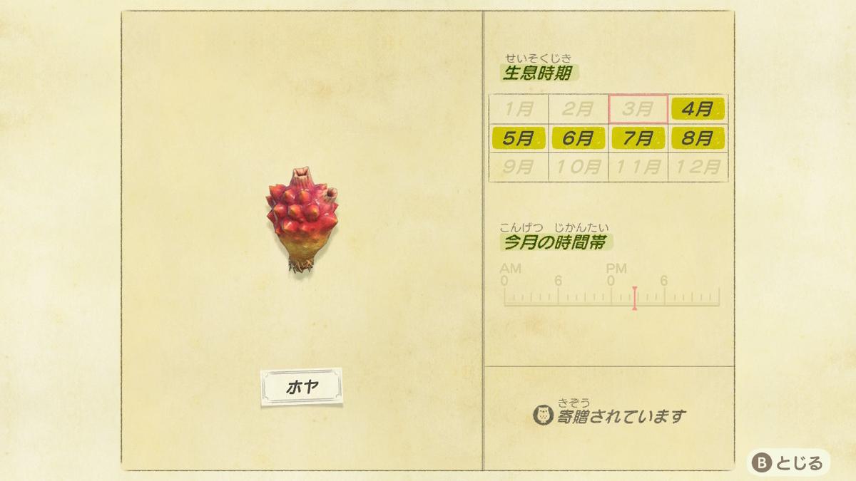 f:id:negototsukasa:20200705002451j:plain