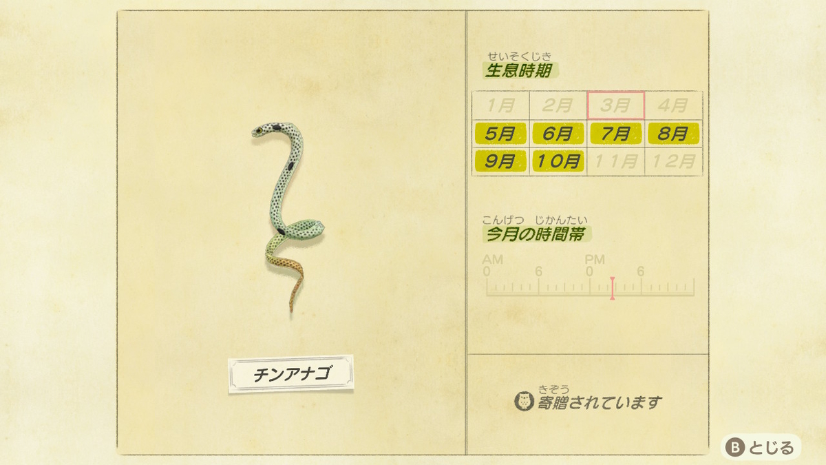 f:id:negototsukasa:20200705002456j:plain