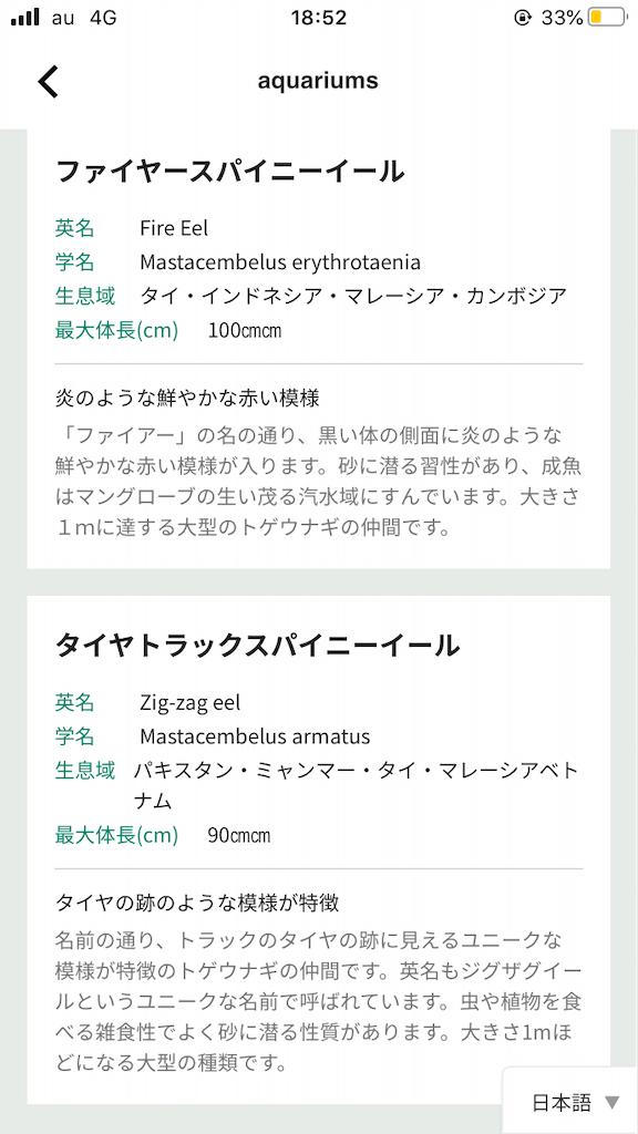 f:id:negototsukasa:20200720002201p:image