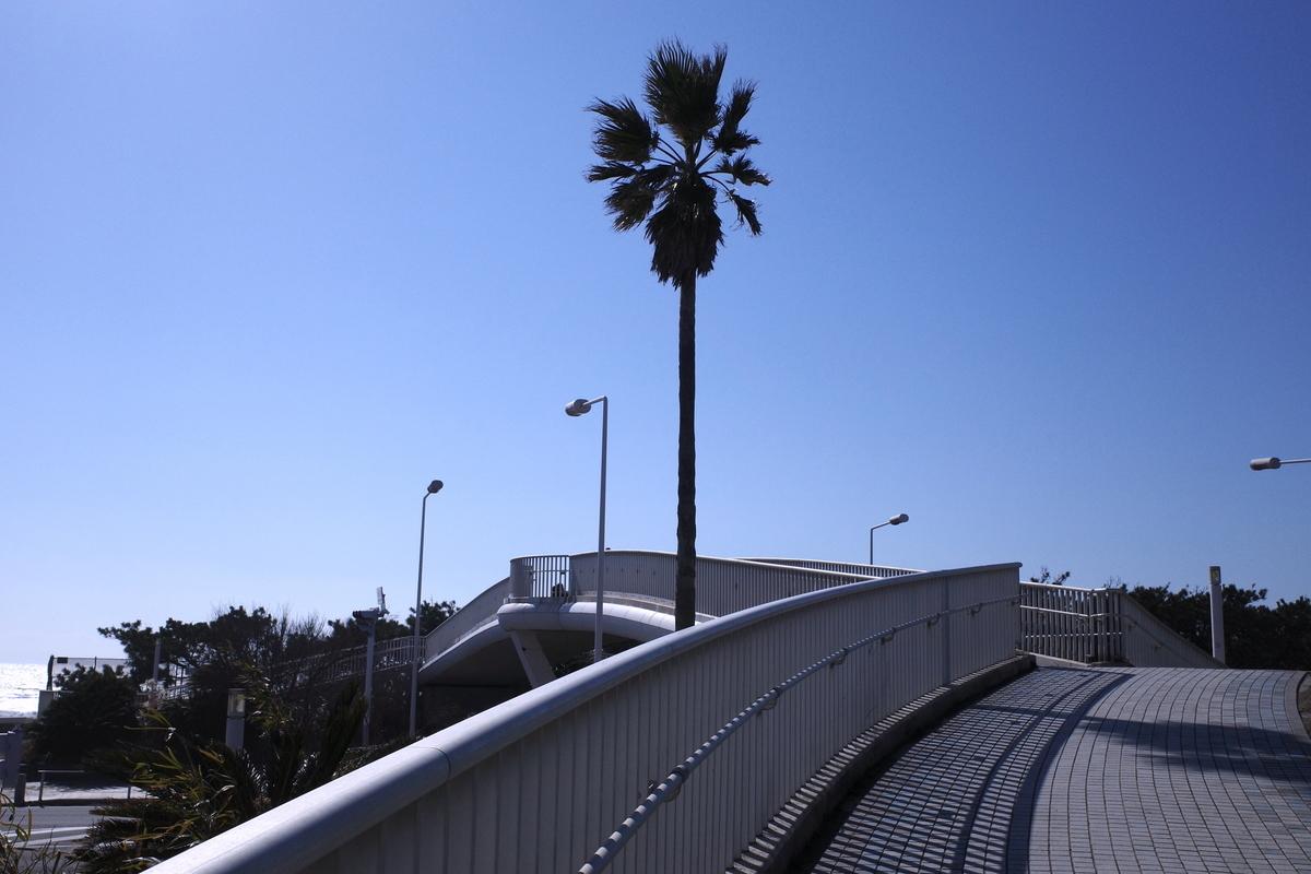 f:id:neilchikuwa:20210210171012j:plain