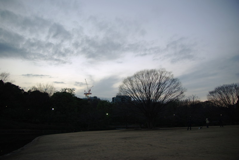 20090307193437