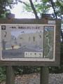 [風景][高尾山]id:neji_shiki