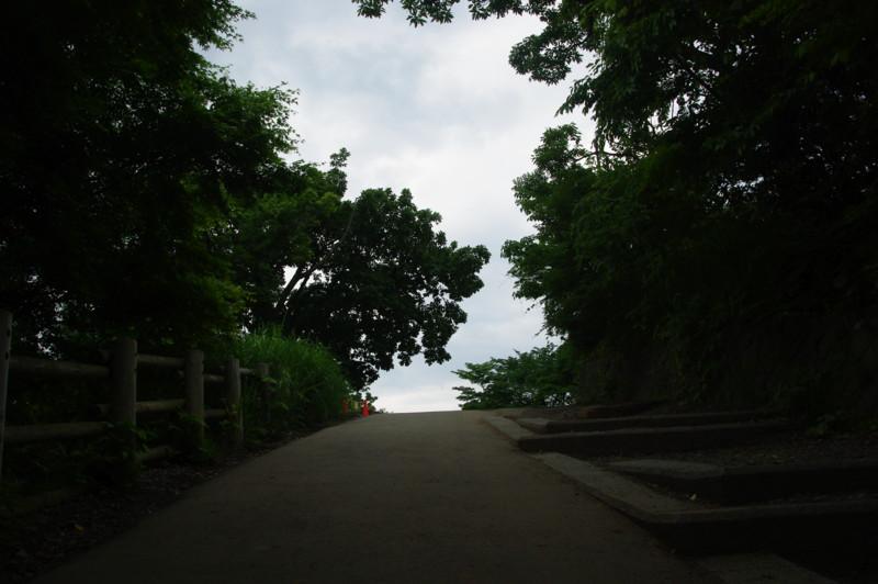 [風景][高尾山]
