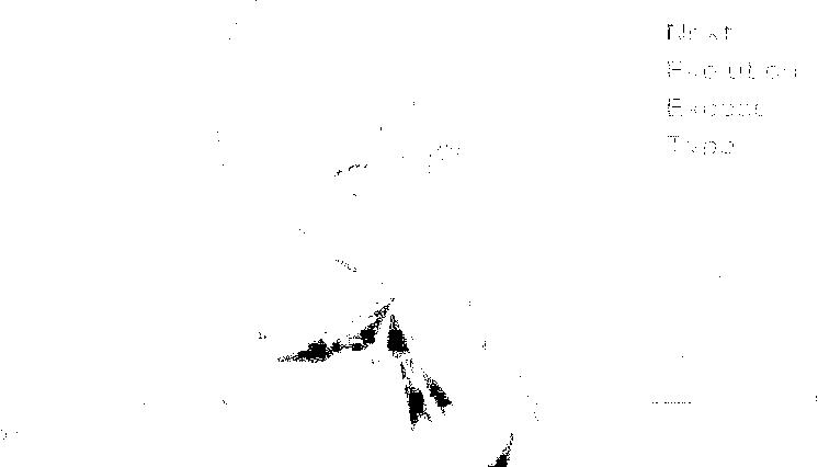 f:id:nek654:20170326151726p:plain