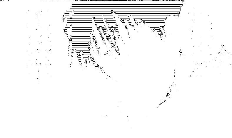 f:id:nek654:20170702203143p:plain