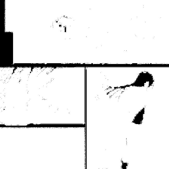 f:id:nek654:20170705220314p:plain