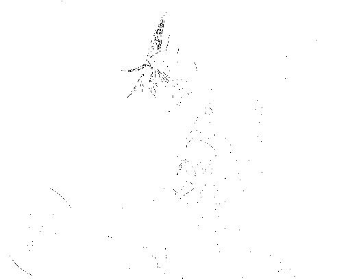 f:id:nek654:20170821223120p:plain