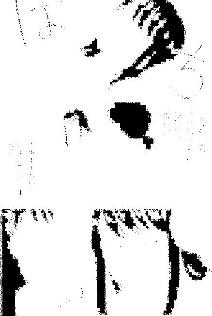 f:id:nek654:20170830183751p:plain