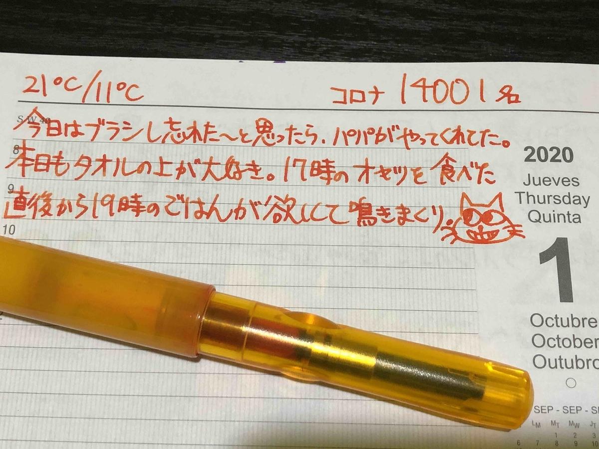 f:id:neko-bungu:20201102040609j:plain