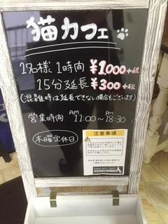 f:id:neko-cafe:20160708192022j:plain