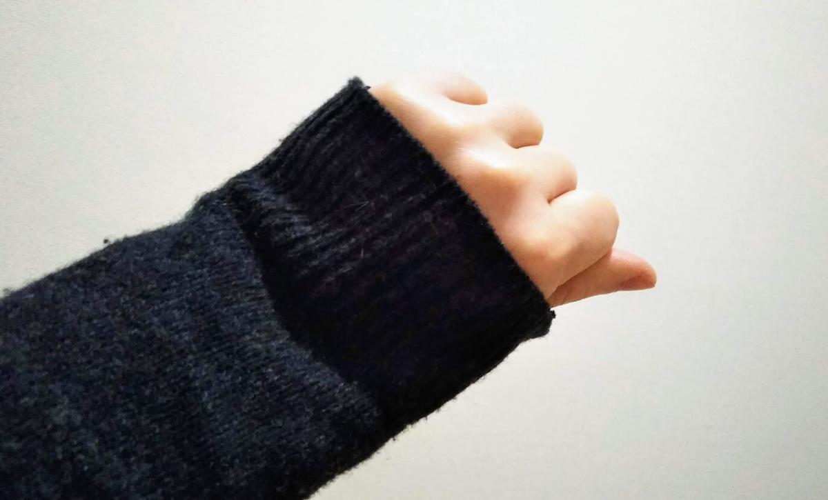 f:id:neko-gurashi:20201224080002j:plain
