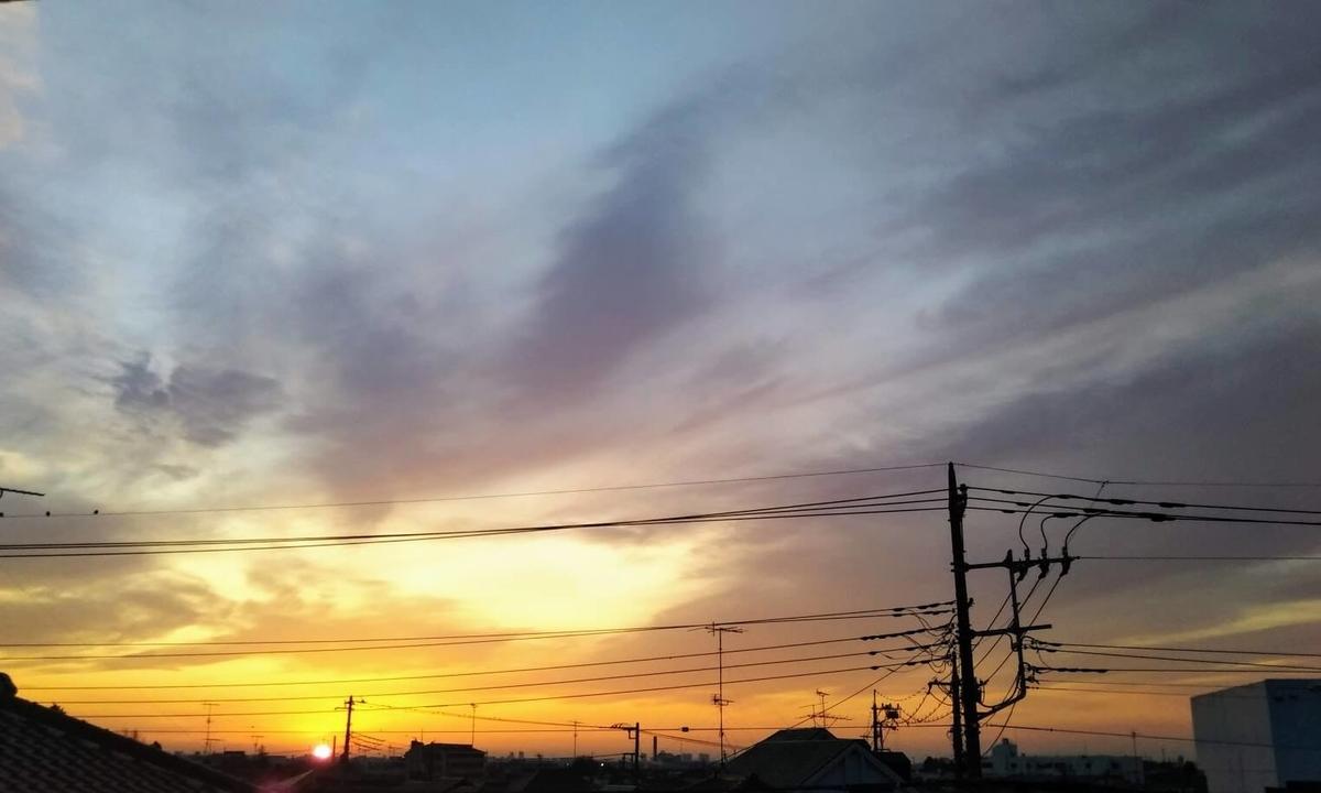 f:id:neko-gurashi:20210316210928j:plain