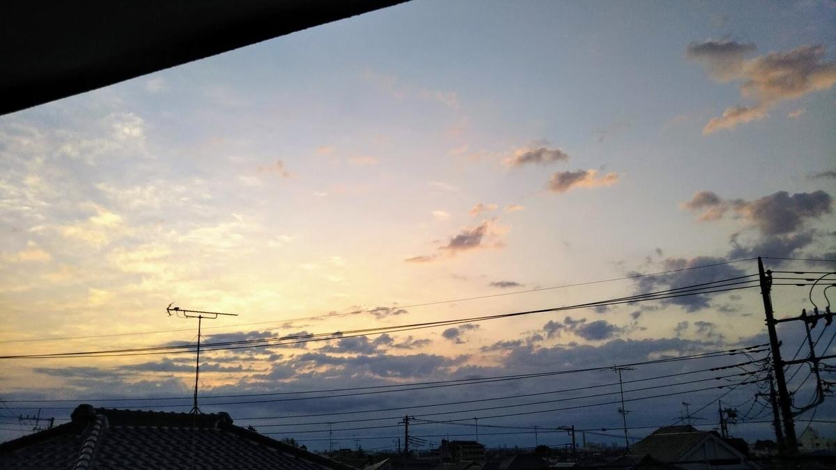 f:id:neko-gurashi:20210409161832j:plain