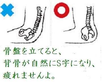 f:id:neko-hai:20180725173053j:plain