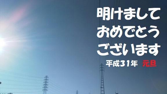 f:id:neko-hai:20190102181357j:plain