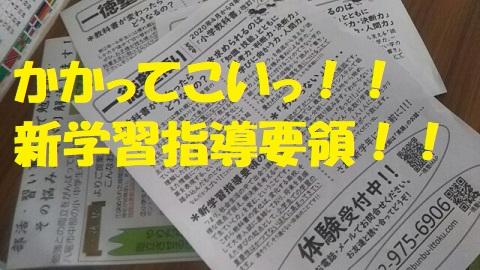 f:id:neko-hai:20200203194843j:plain