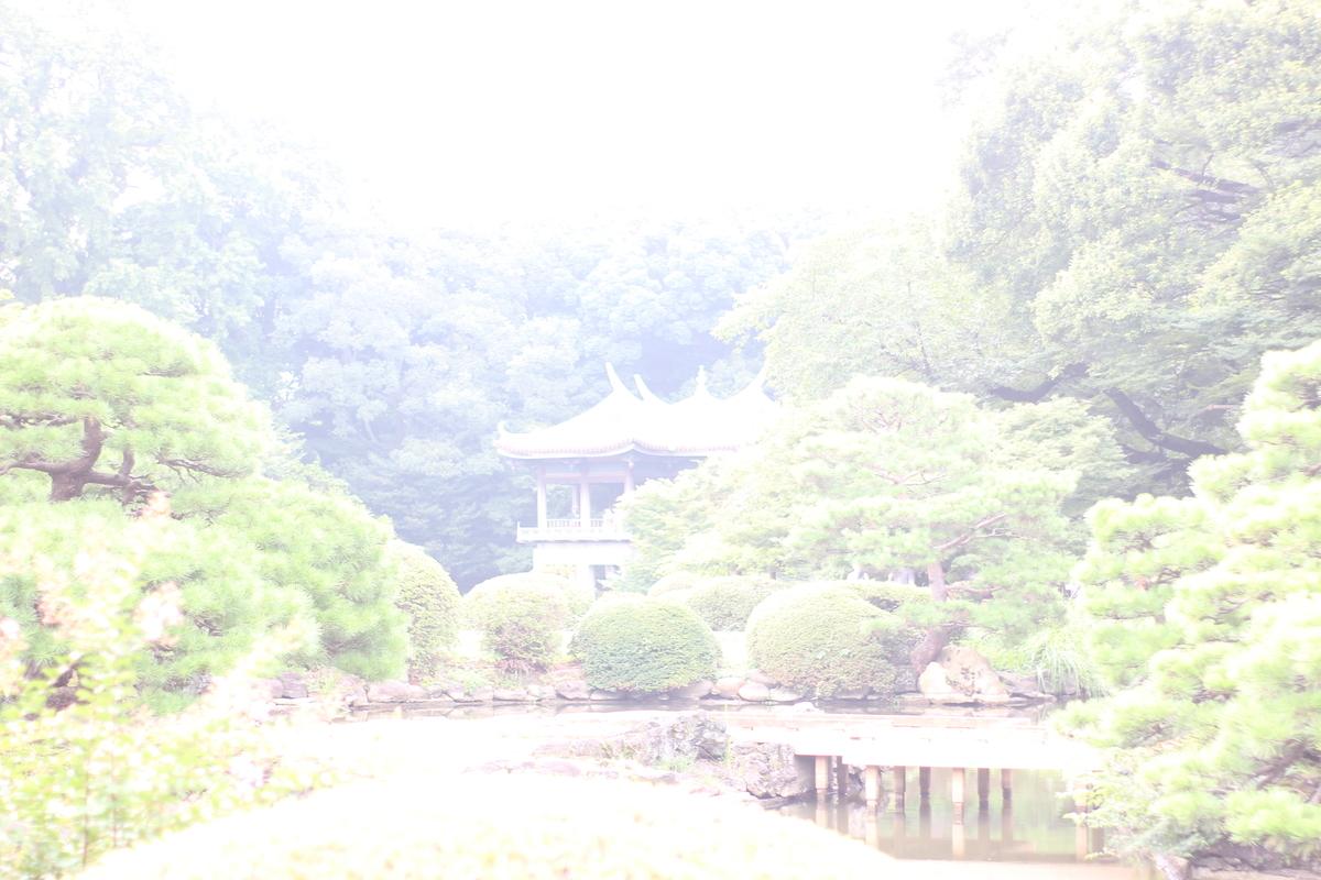 f:id:neko-sirakawa:20190829233100j:plain