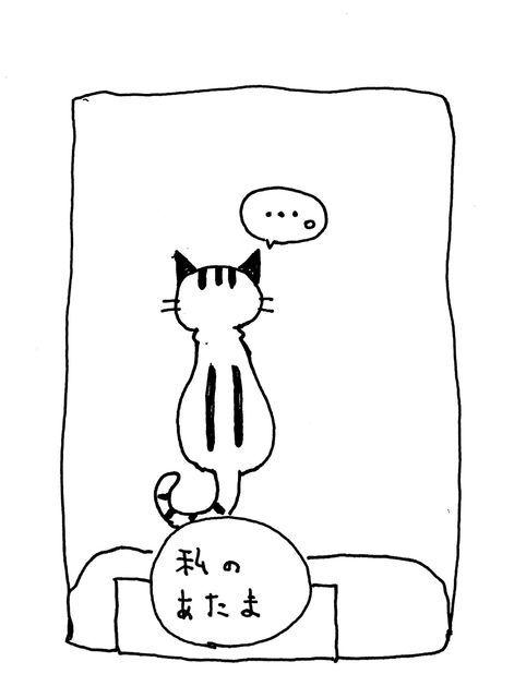 f:id:neko_mama_neko:20190105190952j:plain