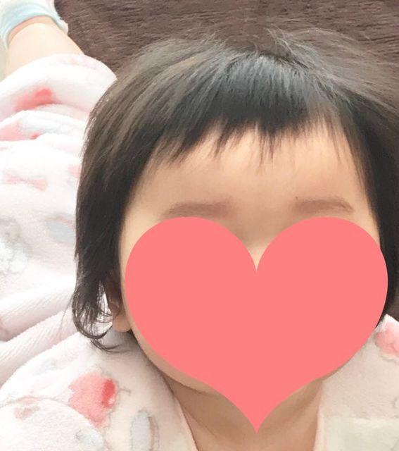 f:id:neko_mama_neko:20190129202840j:plain
