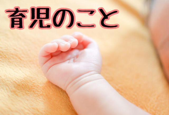 f:id:neko_mama_neko:20190401101710j:plain
