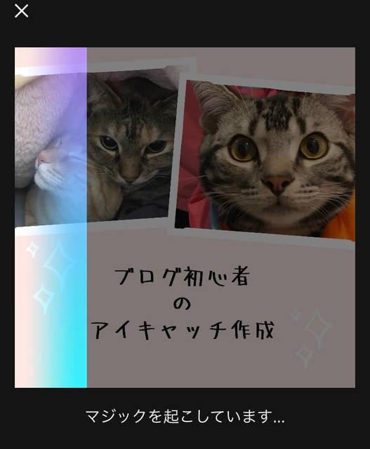 f:id:neko_mama_neko:20190430194811j:plain