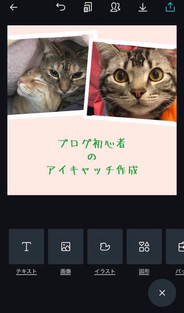 f:id:neko_mama_neko:20190430194815j:plain