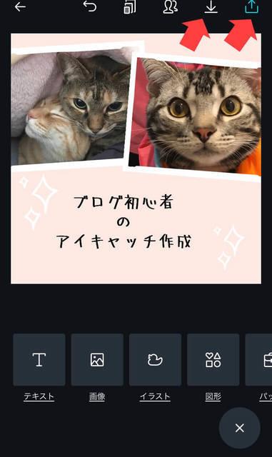 f:id:neko_mama_neko:20190430195010j:plain