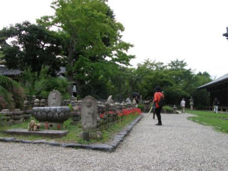 f:id:nekoatama:20101001221438j:image