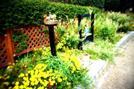 f:id:nekoatama:20111116221916j:image
