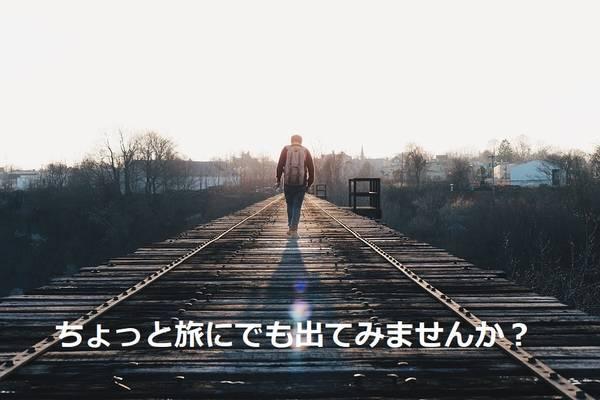 f:id:nekobuchou:20190427201556j:plain