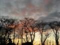 [雲][ハイク]夕空