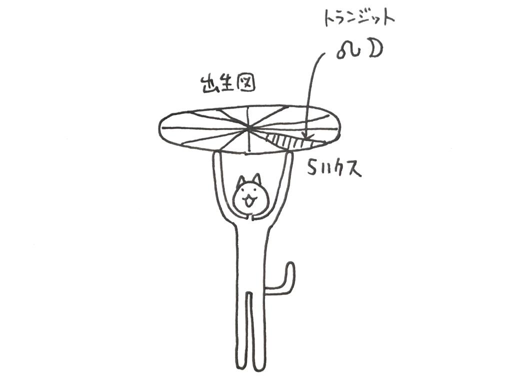 f:id:nekochan_pion:20190123091109j:plain