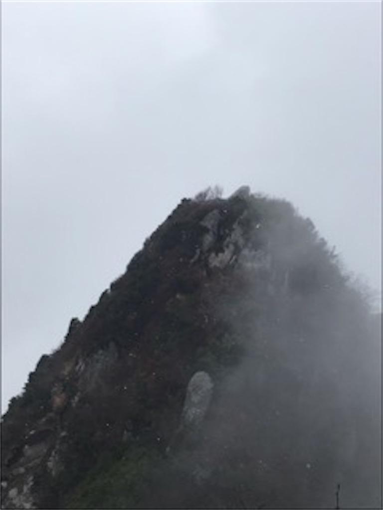 f:id:nekochiyo3:20181106232401j:image