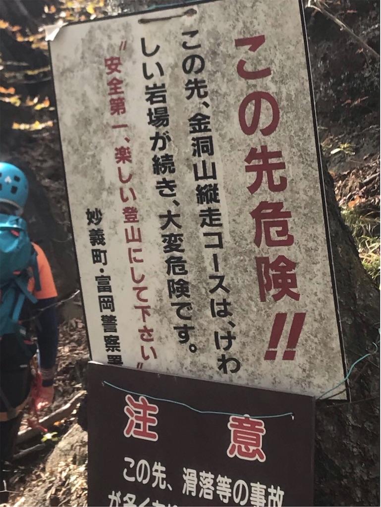 f:id:nekochiyo3:20191106214146j:image