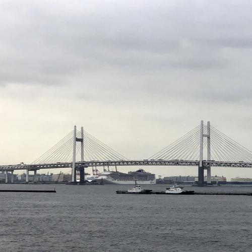 大さん橋から見た大黒ふ頭に泊まるMSCスプレンディダ