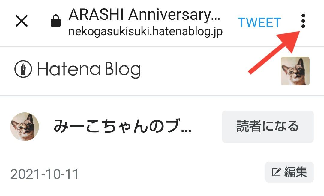 f:id:nekogasukisuki:20211011044337j:plain